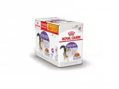 ROYAL CANIN ALIMENTATION CHAT STERIL GELEE 12X85G +4