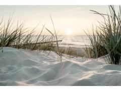 TOILE BEACH SUNSET 30X45